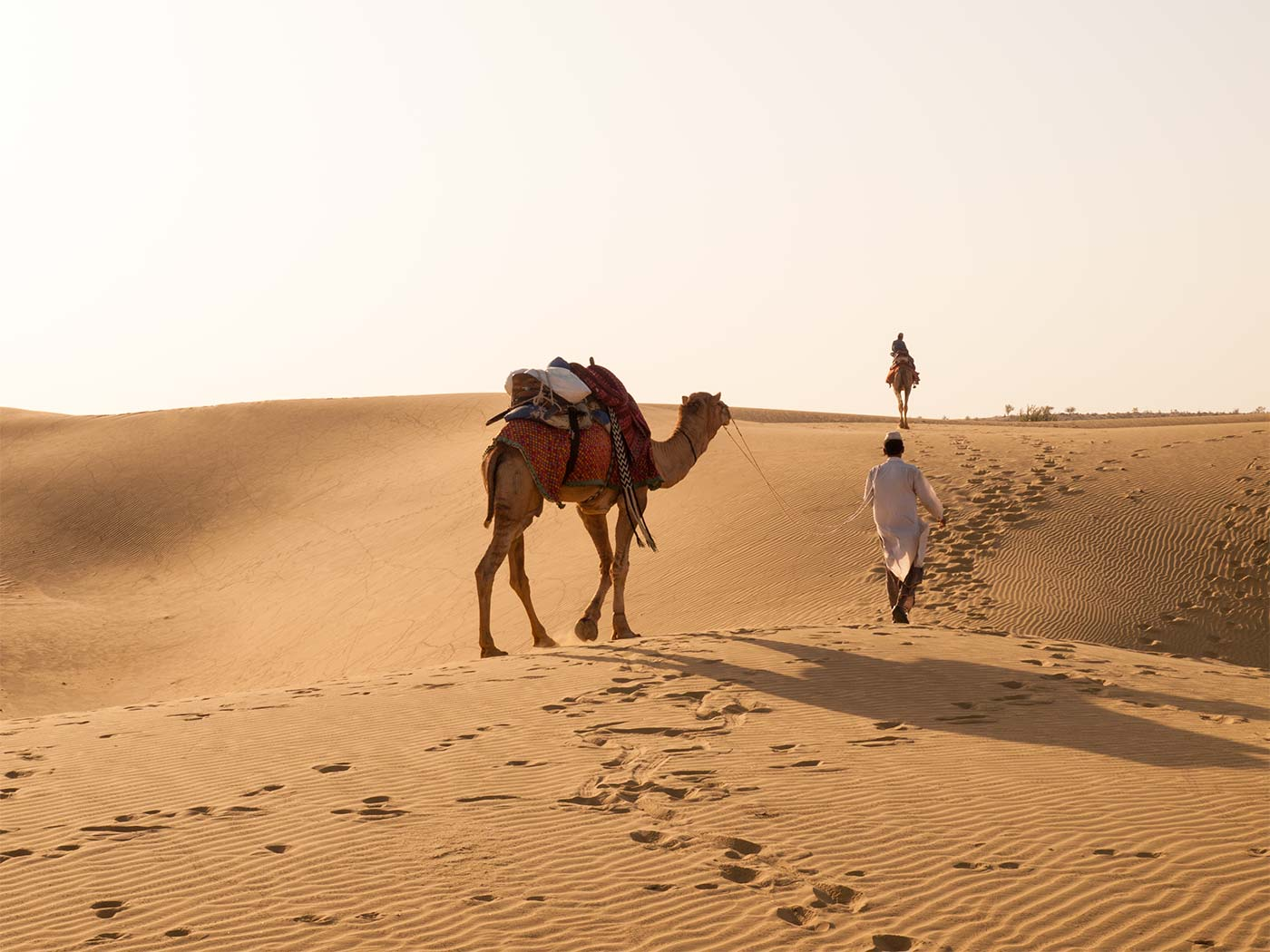 A night in the Thar Desert | Happymind Travels
