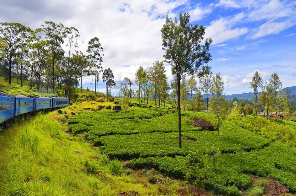 Landscape on the Train Trip from Kandy to Ella - Sri Lanka | Happymind Travels