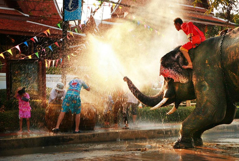 Songkran Festival in Ayutthaya with elephant to participate | Happymind Travels