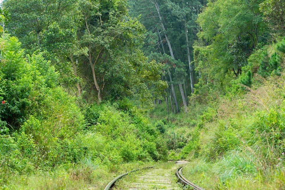 Percurso estreito na Viagem de Trem de Kandy para Ella - Sri Lanka | Happymind Travels