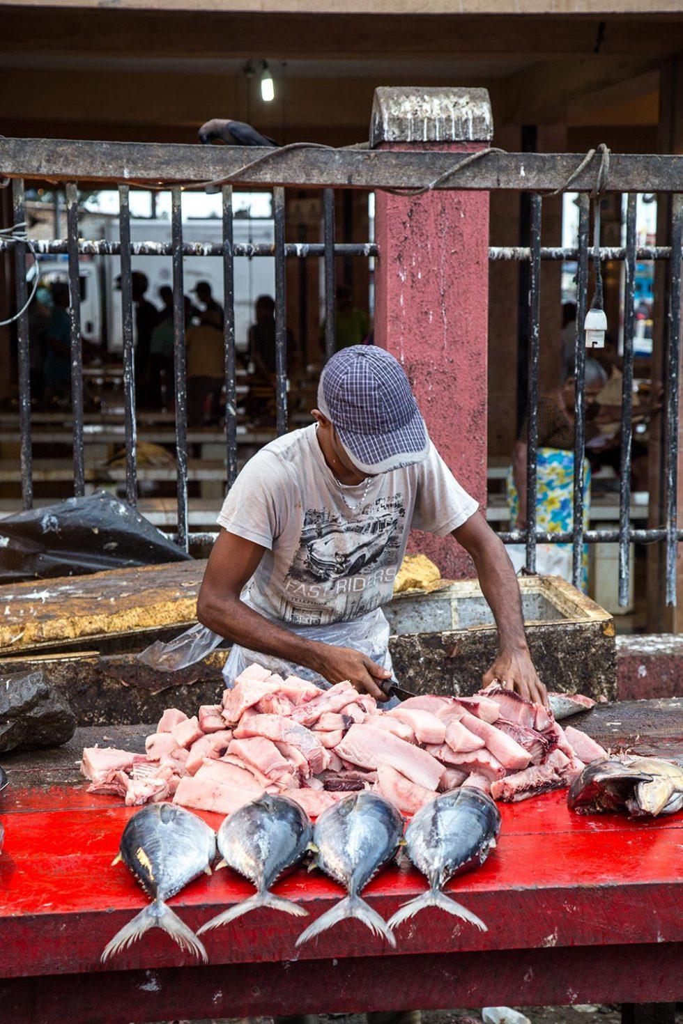 Fisherman preparing fish at the Fish Market in Negombo   Happymind Travels