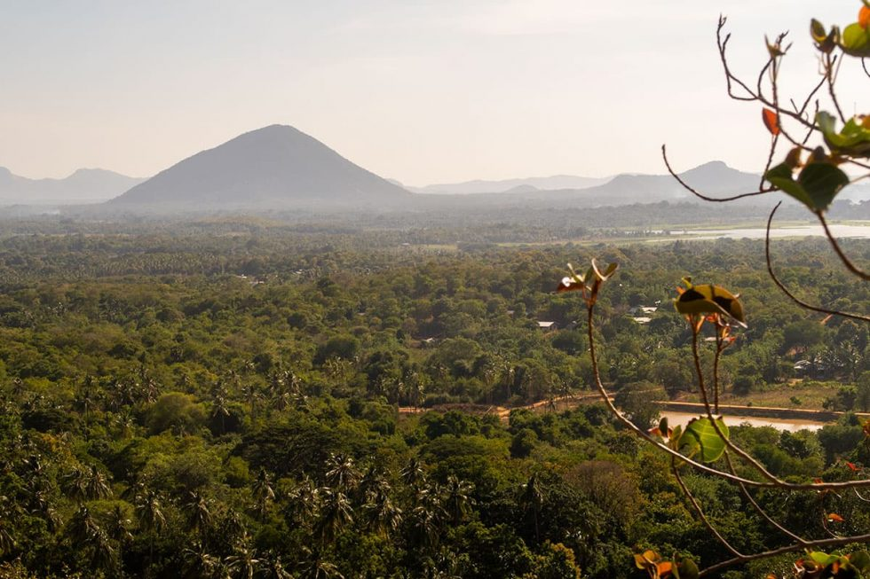 Landscape from top of Dambulla at Cave Temple, Sri Lanka | Happymind Travels