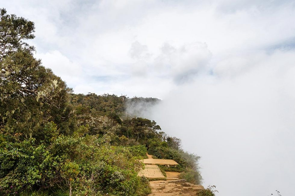 The World's End landscape already covered by clouds in Horton Plains, Sri Lanka | Happymind Travels